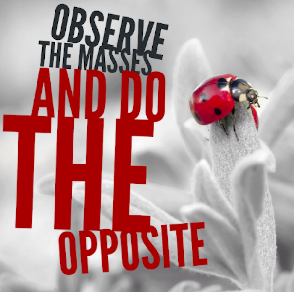 observe-the-masses-and-do-the-opposite-succeed-for-yourself